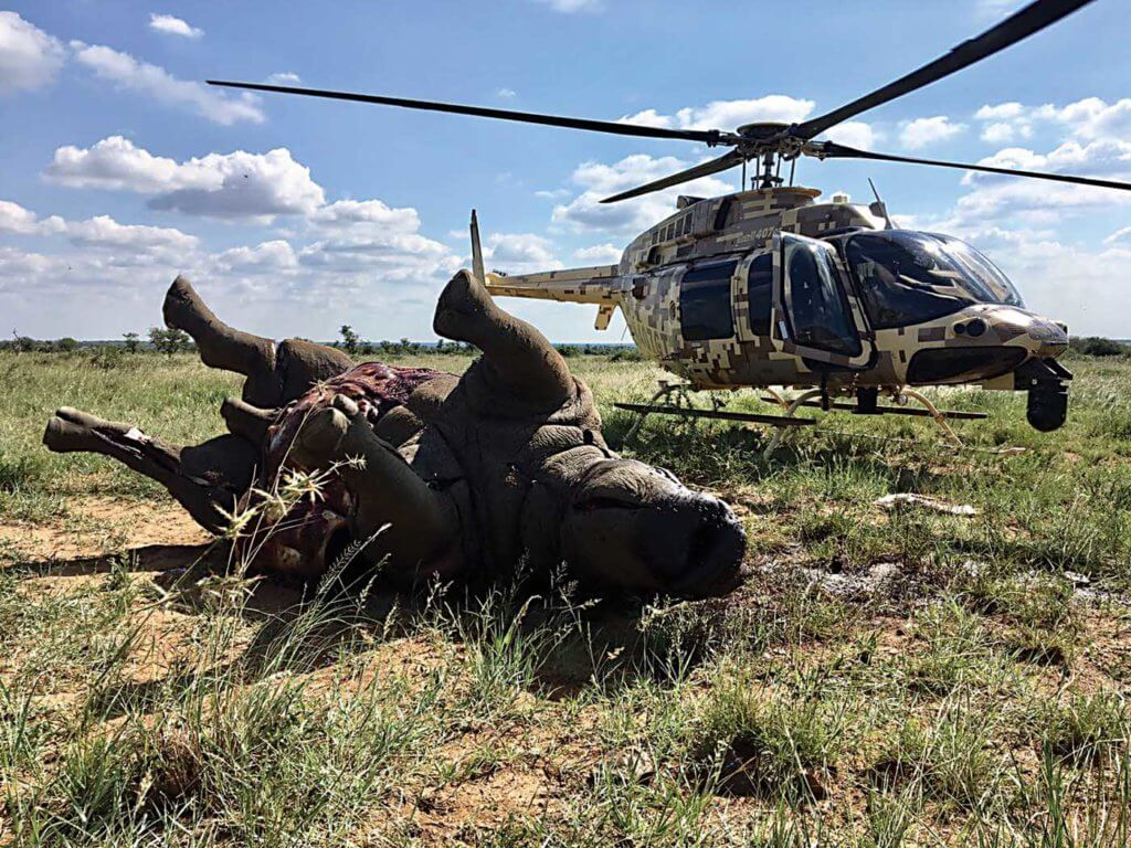 The effects of poaching are often gruesome and sometimes fatal. Rhino 911 Photo