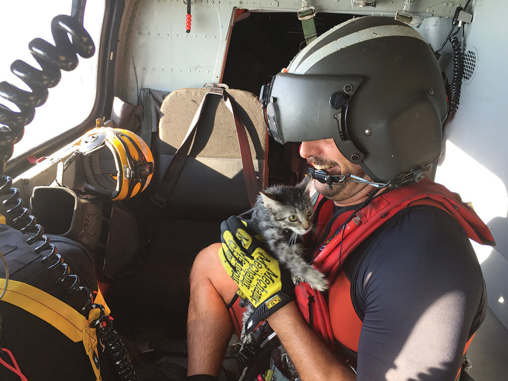 A U.S. Coast Guard Air Station San Francisco pilot was teamed with a USCG Aviation Training Center Mobile co-pilot, USCG Air Station Miami flight mechanic, and USCG Air Station Clearwater rescue swimmer to execute continued urban search-and-rescue missions in an Air Station Miami MH-65D helicopter. Among those saved was a cat rescued from a balcony. USCG Photo