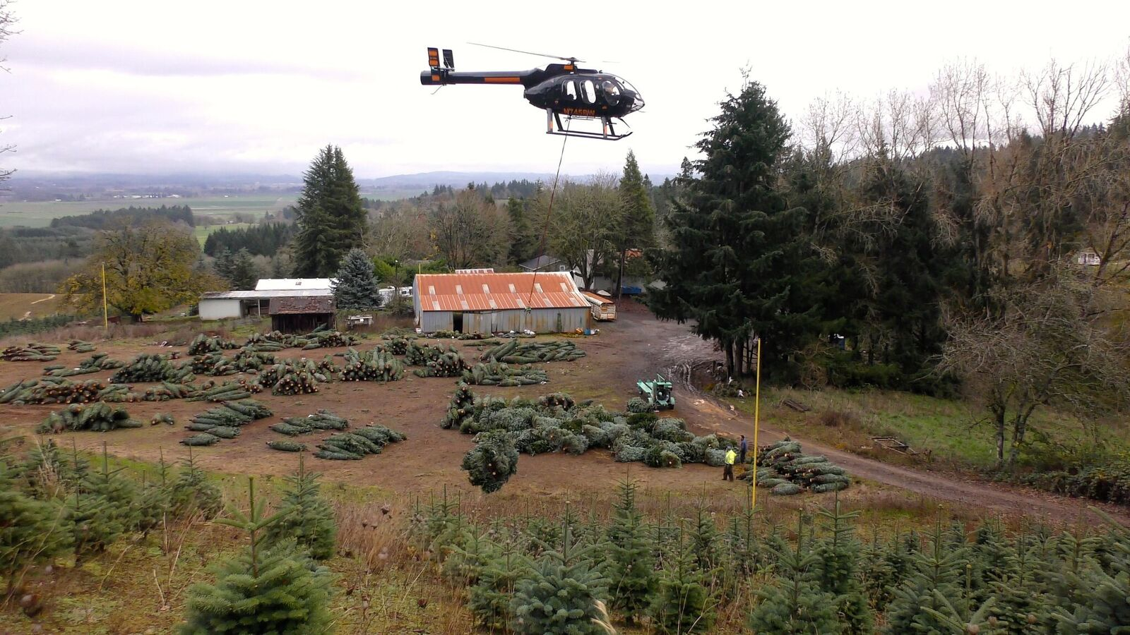 Helicopters complete oregon christmas tree harvest vertical magazine buycottarizona Image collections