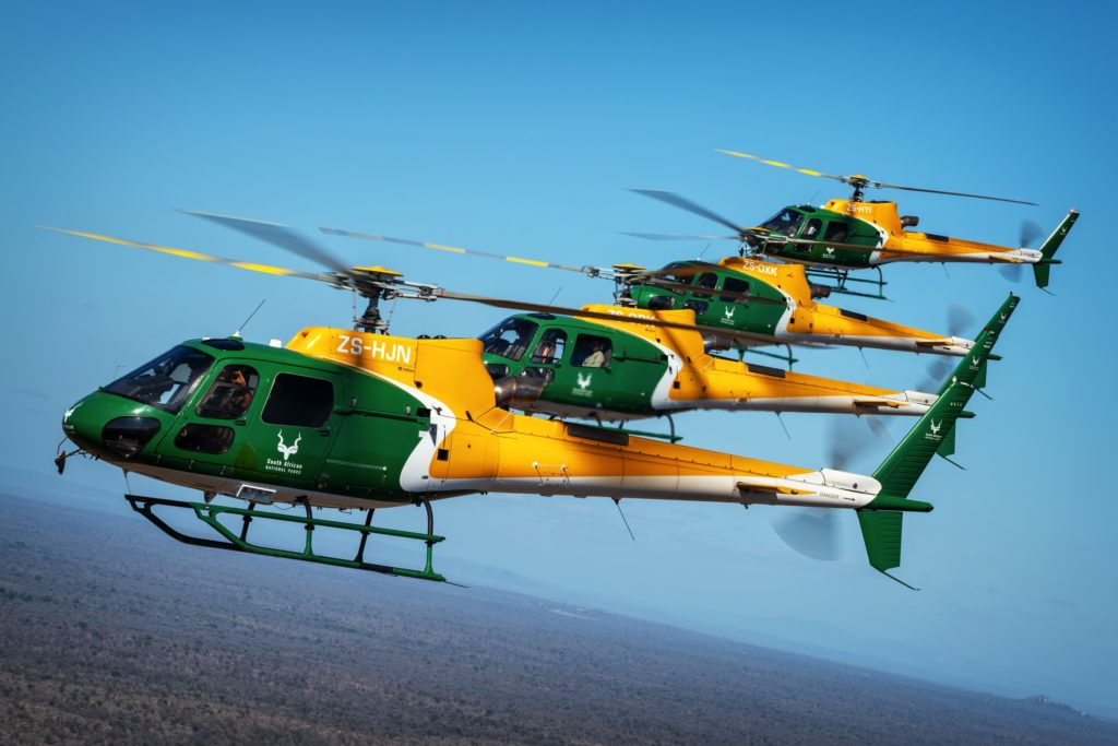 Four SANParks helicopters in formation